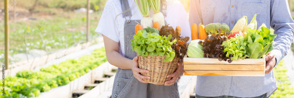 Fototapeta Beautiful young asian woman and man harvest and picking up fresh organic vegetable garden in basket at hydroponic farm, agriculture for healthy food and business entrepreneur concept, banner website.