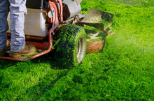 Cutting The Grass Gardening Activity, Lawn Mower Cutting The Grass.