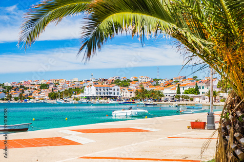 Croatia, palms on waterfront in town of Novalja on the island of Pag Canvas Print