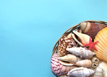 A Large Variety Of Sea Shells Of White, Brown, Gray, Beige, Yellow And Pink Colors And A Small Bright Red Starfish Lie In A Wicker Basket On A Turquoise Background