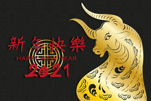 Happy Chinese New Year 2021 Ye...