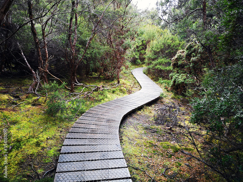 Fotografie, Obraz The Overland Track is an Australian bushwalking track traversing Cradle Mountain-Lake St Clair National Park, at the north of the Tasmanian Wilderness World Heritage Area