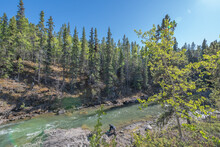 Man Gold Panning On The Side Of A Flowing Creek Bed In British Columbia, Near Gold Rush Yukon Territory, Northern Canada In The Spring Time With Stunning Blue Skies.
