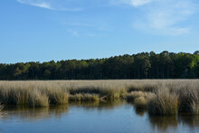 View Of The Salt Marsh At Hughlett Point Natural Area On The Coast Of The Chesapeake Bay.