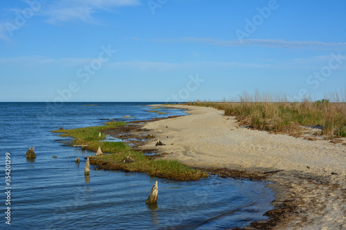 Fotografia, Obraz Wide open beach along the Chesapeake Bay at Hughlett Point Natural Area at the tip of the Northern Neck in Virginia