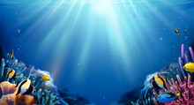 Coral Reefs And Fish Background