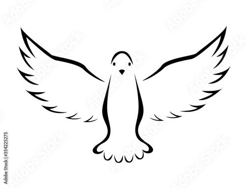 Foto Vector illustration of flying dove