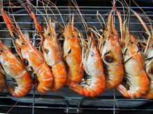 Grilled River Shrimps On The Flaming Grill, Thai Foods ,Big Shrimps, Most Favorite Food In Thailand