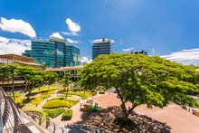 Cebu City, Philippines: View Of Ayala Terraces And Surrounding Buidlings, In Cebu Business Park.