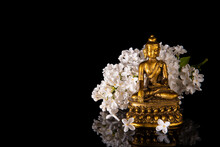 Golden Buddha Framed By White Lilac Flowers On A Black Background With Reflection