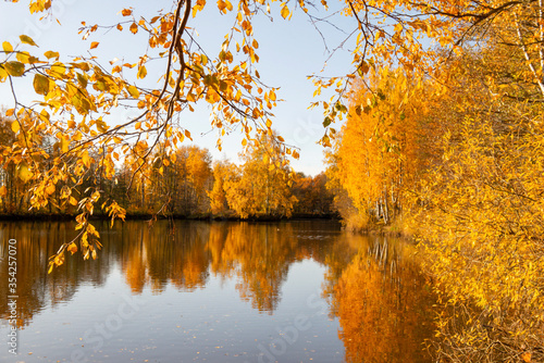 Fototapety, obrazy: autumn landscape, trees with yellow fallen leaves reflected in the water of the lake