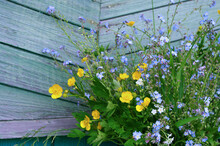Bouquet Of Mixed Colorful Wildflowers On Blue Vintage Wooden Background. Copy Sapce Text.