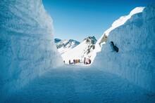 Val Di Sole Passo Tonale - Ada...