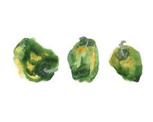 Watercolor Set Of Three Green ...