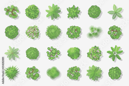 Obraz Trees top view. Different plants and trees vector set for architectural or landscape design. (View from above) Nature green spaces. - fototapety do salonu