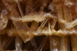 Naturalne kryształy gipsu w zbliżeniu makro.