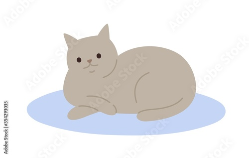 Obraz Cute cartoon gray cat lying on carpet vector flat illustration. Adorable domestic animal relaxing on floor isolated on white background. Funny pet colorful furry friend with tail - fototapety do salonu