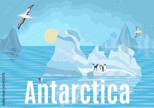 Antarctica penguins and albatrosses on icebergs Wallpaper Mural