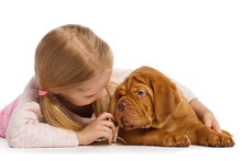 Little Cute Girl With A Puppy ...