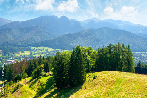 Fototapeta zakopane summer landscape. beautiful view from gubalowka in to the distant tatra  mountains. popular travel destination of poland. sunny weather with puffy clouds above the magnificent ridge obraz