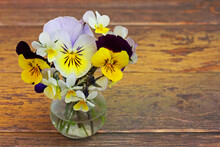 A Tiny Bouquet Of Viola Tricol...