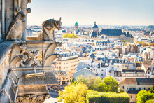 Gargoyle Statue On Notre Dame ...