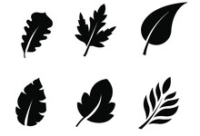 Vector Leaf Icons Set On White...
