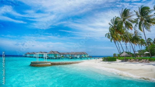 Beautiful hotel beach with tropical palm trees