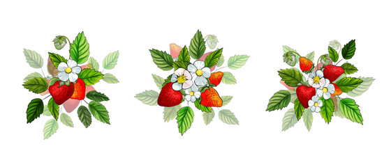Panel Szklany Owoce Set of three composition with red strawberry, white flowers and green leaves isolated on white background. Berries for kitchen design. Vector stock illustration.