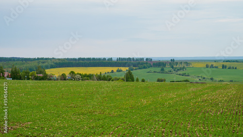 Fototapety, obrazy: Countryside landscape with green fields and cloudy sky.