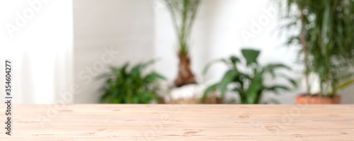Obraz Houseplants at home.Wooden board. - fototapety do salonu