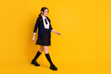 Full Body Profile Side Photo Of Positive University Student Go Walk Lecture Courses Wear Good Look Uniform Shoes Isolated Bright Color Background