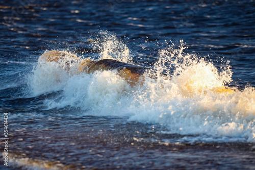Shore seaside view of wave splash. #354614424