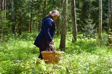 Mushroom Picker Woman Walks In...