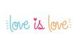 Isolated lgtbi love is love text vector design