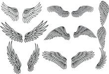 Wings Icon Set, Bird Drawing I...
