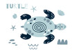 Cute turtle cartoon. Cute baby ocean animal girls boys summer sea element Kids nautical print cute blue turtle Illustration
