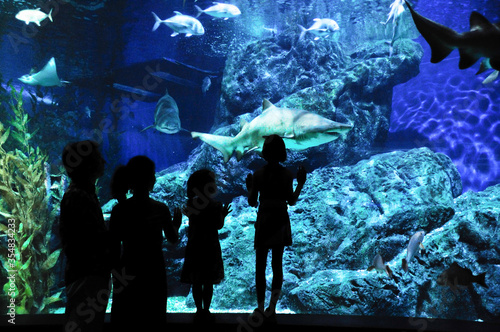 Fotografie, Tablou Silhouettes of family with two kids in oceanarium, looking at fishes in aquarium