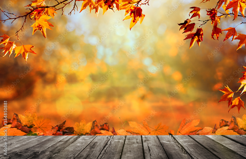 Fototapeta Wooden table with orange fall  leaves, autumn natural background