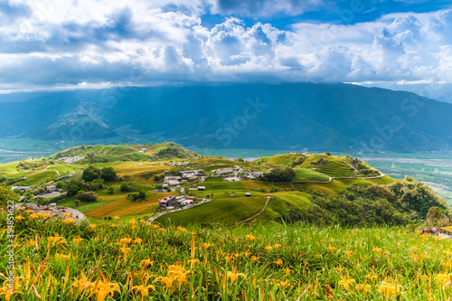Obraz na plátně Daylily flower farm at Liushidan Mountain in Hualien, Taiwan