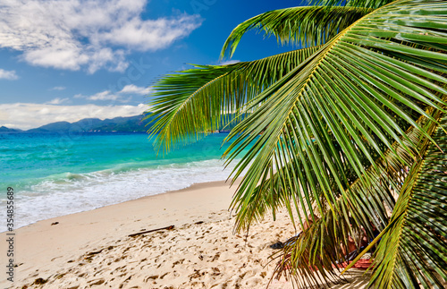 Fototapeta Beautiful Anse Soleil beach with palm tree at Seychelles obraz