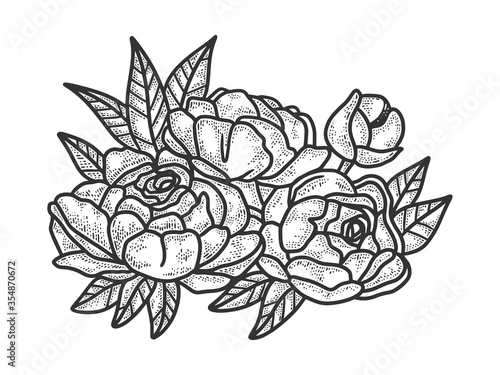 Fototapeta peony flower sketch raster illustration