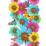 butterfly648