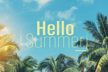 Hello Summer Words On Tropical...