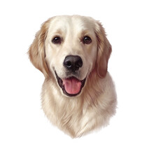 Illustration Of A Nice Golden Retriever Isolated On White Background. Guide, A Disability Assistance Dog. Watercolor Animal Art Collection Dog. Hand Painted Illustration Of Pet. Good For T Shirt, Card