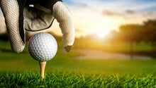 Hand Of Golfer Putting Golf Ball On The Tee.
