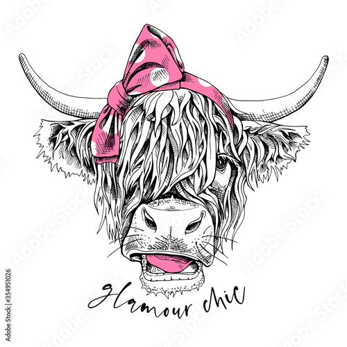 Fototapeta Cute cow (Hairy Coo) in a pink polka dot bow headband