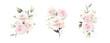 rose watercolor vector set beautiful floral bouquet