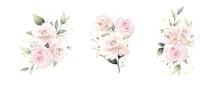 Rose Watercolor Vector Set Bea...