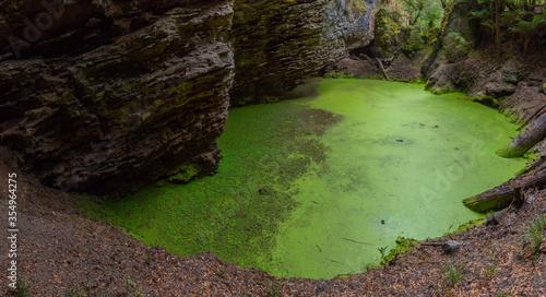 Fototapeta Sinkhole behind Trowutta Arch at Tarkine forest in Tasmania, Australia